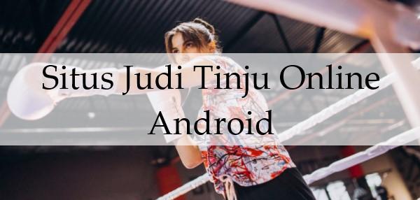 Situs Judi Tinju Online Android